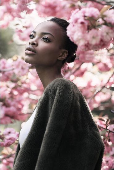 Flower -Emily Soto